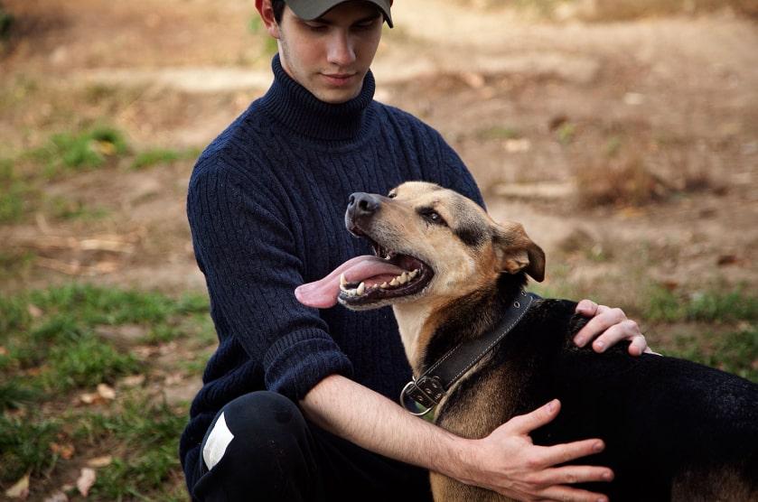 Волонтер и собака