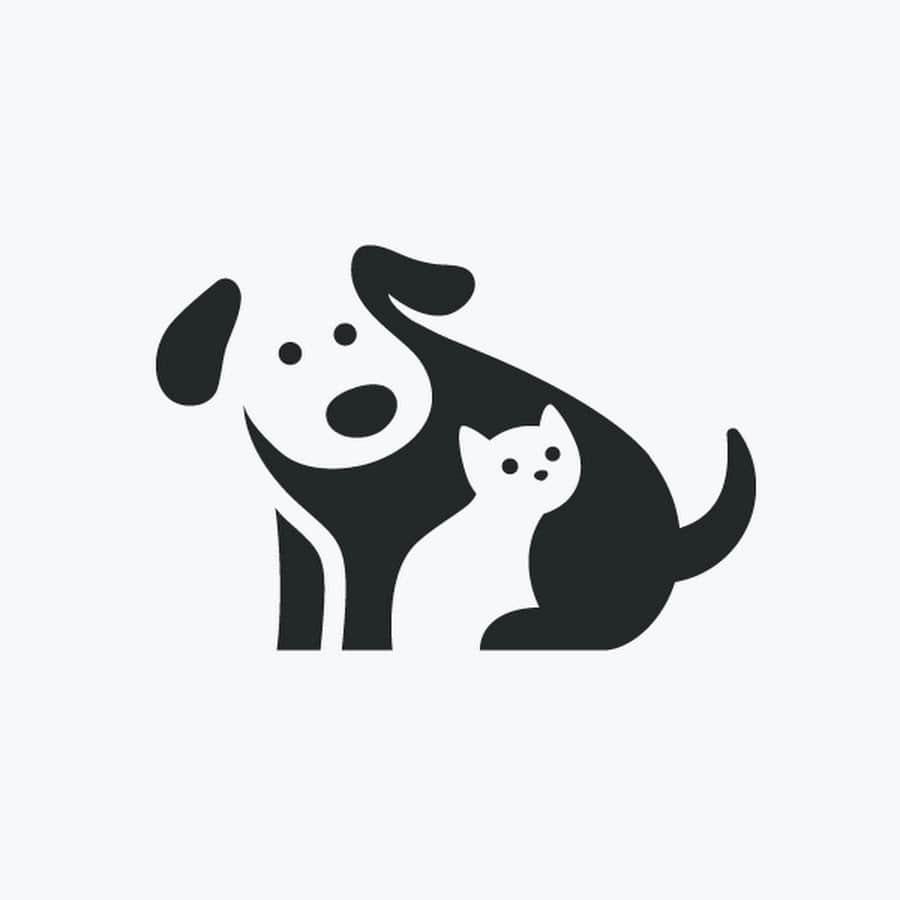 Изображение кошки и собаки
